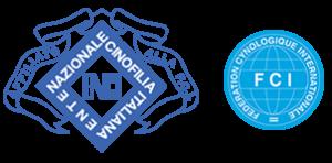 Allevamento labrador campania riconosciuto ENCI FCI